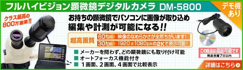 DM-5800